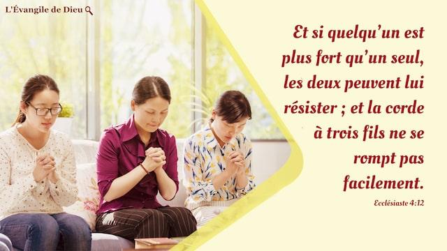 Ecclésiaste 4:12 Et si quelqu'un est plus fort qu'un seul, les deux peuvent lui résister ; et la corde à trois fils ne se rompt pas facilement.
