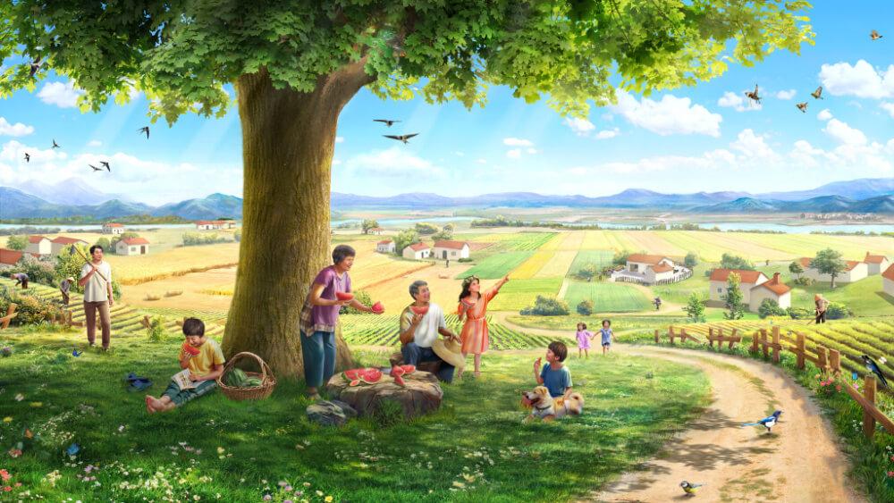 Histoire. Une graine, la terre, un arbre, la lumière du soleil, les oiseaux chanteurs et l'homme