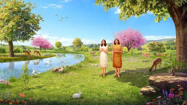 L'Éternel Dieu fit à Adam et à sa femme des habits de peau, et il les en revêtit Ⅱ
