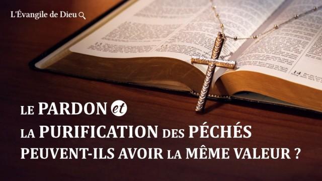 Méditation chrétienne – Le pardon et la purification des péchés peuvent-ils avoir la même valeur ?