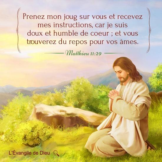 Matthieu 11:29 Prenez mon joug sur vous et recevez mes instructions, car je suis doux et humble de coeur ; et vous trouverez du repos pour vos âmes.