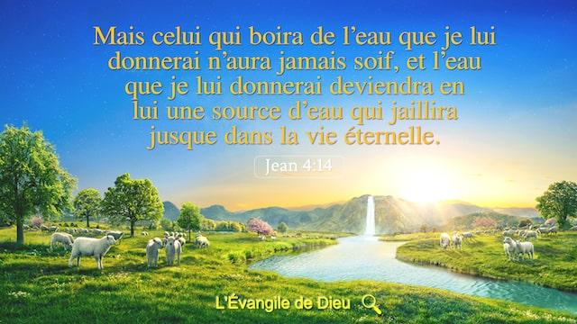 Jean 4:14 Mais celui qui boira de l'eau que je lui donnerai n'aura jamais soif, et l'eau que je lui donnerai deviendra en lui une source d'eau qui jaillira jusque dans la vie éternelle.