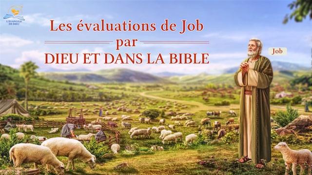 Les évaluations de Job par Dieu et dans la Bible