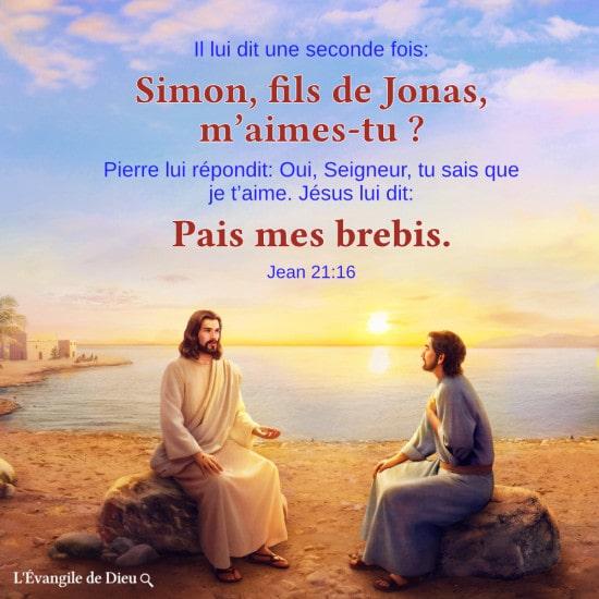 La volonté dont le Seigneur Jésus a demandé à Pierre encore et encore