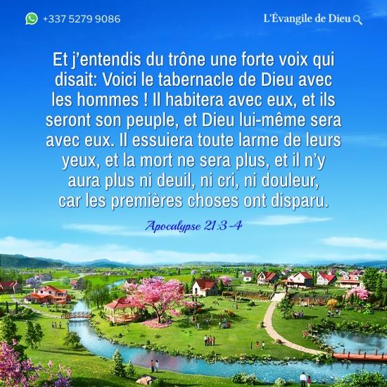 Images bibliques – Apocalypse 21:3-4