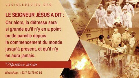 Les prophéties bibliques sur les signes de la fin des temps : Le chemin pour accueillir le retour du Seigneur