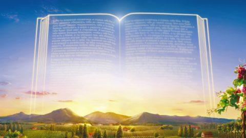 Seuls le jugement et le châtiment de Dieu dans les derniers jours constituent Son œuvre critique et déterminante du salut de l'humanité