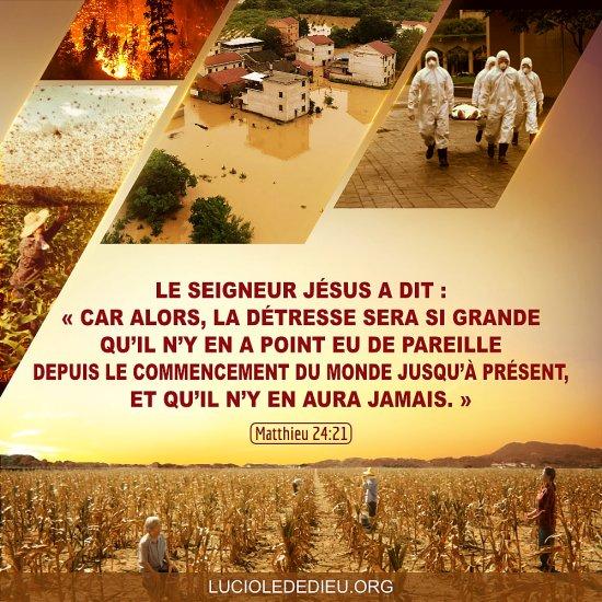 Images bibliques – Matthieu 24:21