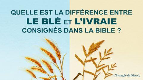 Quelle est la différence entre le blé et l'ivraie consignés dans la Bible