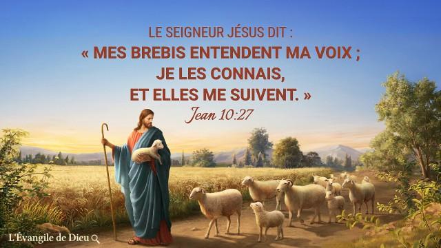 Jean 10 27,Versets bibliques sur la fin des temps pour vous aider à accueillir le retour du Seigneur