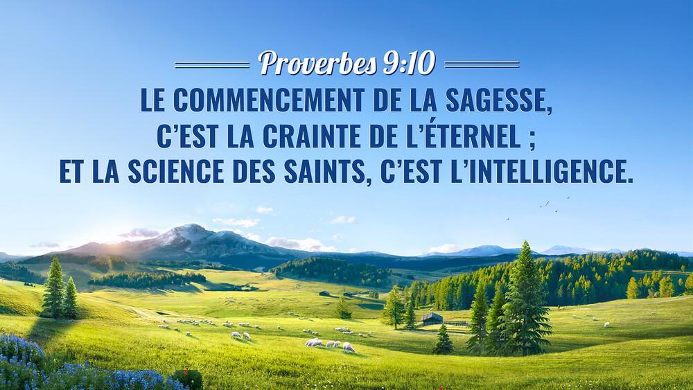 Versets-sur-la-connaissance-de-Dieu